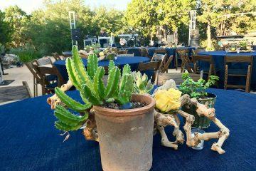 Austin-event-florals-6429